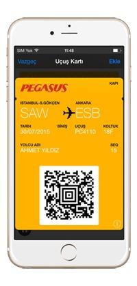 pegasus check in app